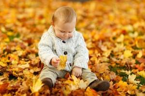 autumn-165184_640